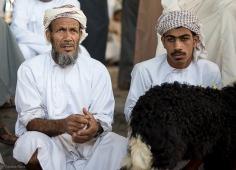 Oman-0871-small