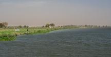The Yamuna near Jagatpur Bund