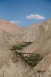 ladakh2016-small-8090
