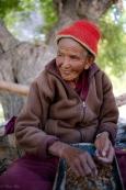ladakh2016-small-8529